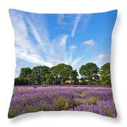 English Lavender Fields In Hampshire Throw Pillow