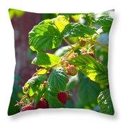 English Raspberries Throw Pillow