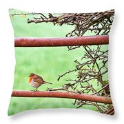 English Robin Throw Pillow