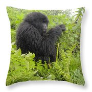 Engrossed Throw Pillow