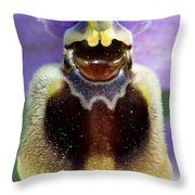 Enigma Of Outer World Throw Pillow