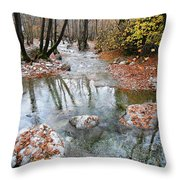 Enipeas In Autumn Throw Pillow