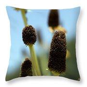 Enjoy Your Own Beauty Throw Pillow