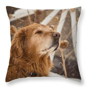 Enjoying The Moment - Golden Retriever - Casper Wyoming Throw Pillow