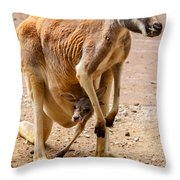 Enjoying The Ride Throw Pillow