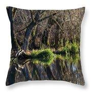 Enkoeping Dec 2013 Throw Pillow