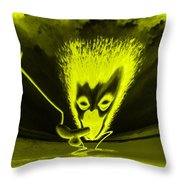 Enlightened Encounter Throw Pillow