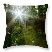 Enlightenment From The Angels  Throw Pillow