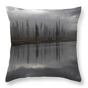 Enshrouded By Fog Throw Pillow