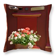 Entrance Door With Flowers Throw Pillow