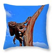 Entrance To Mesa Verde Throw Pillow
