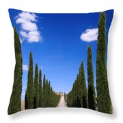 Entrance To Villa Tuscany - Italy Throw Pillow