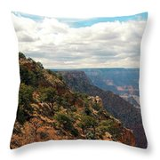 Environment Of The Canyon Throw Pillow