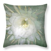 Epiphyllum Oxypetallum - Queen Of The Night Cactus Throw Pillow