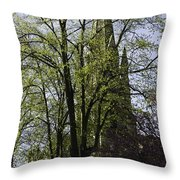 Episcopal Cathedral In Edinburgh Visible Through Trees Throw Pillow