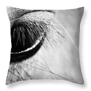 Equine Eye Throw Pillow