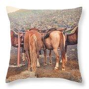 Equine Gossip - Haleakala Throw Pillow
