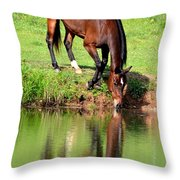 Equine Reflections Throw Pillow