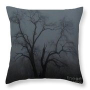 Erie Arbor Elder Throw Pillow