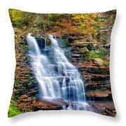 Erie Falls Throw Pillow