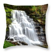 Erie Falls Throw Pillow