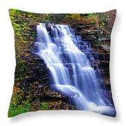 Erie Falls Vertical Panoramic Throw Pillow