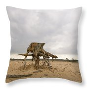 Eroded Tree Stumps Stand On Their Roots Throw Pillow