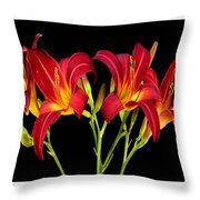 Erotic Red Flower Selection Romantic Lovely Valentine's Day Print Throw Pillow