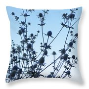 Eryngium Explosion Throw Pillow