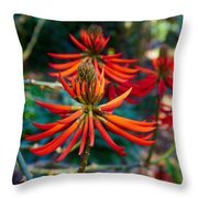 Erythrina Speciosa Throw Pillow