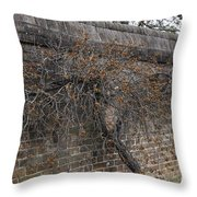 Espaliered Bittersweet Vine Throw Pillow