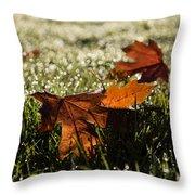Essence Of Autumn Throw Pillow