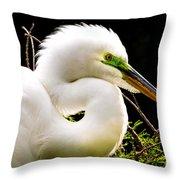 Essence Of Beauty Throw Pillow