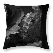 Essence Of My Soul In Black And White Throw Pillow