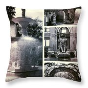 Essence Of Savannah Throw Pillow