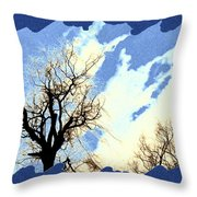 Essence Of Winter Throw Pillow