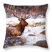 Estes Park Elk Throw Pillow