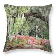 Estherville Plantation Throw Pillow