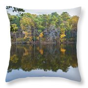 Etched In A Tree Throw Pillow