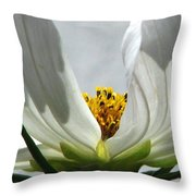 Ethereal Throw Pillow