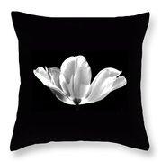 Ethereal Tulip  Throw Pillow