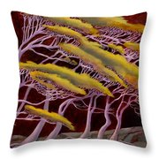 Ethereal Winds Throw Pillow