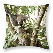 Eucalypt Throw Pillow