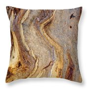 Eucalyptus Bark Throw Pillow