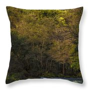 Eume River Galicia Spain Throw Pillow