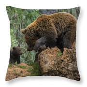 Eurasian Brown Bear 13 Throw Pillow