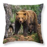 Eurasian Brown Bear 14 Throw Pillow