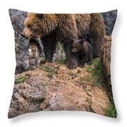 Eurasian Brown Bear 15 Throw Pillow