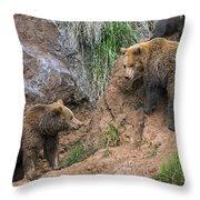 Eurasian Brown Bear 17 Throw Pillow