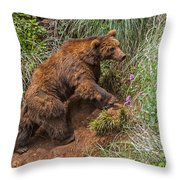 Eurasian Brown Bear 21 Throw Pillow